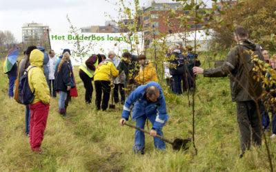 In 2004 werden ook bomen geplant bij Schiphol Rijk/Rozenburg